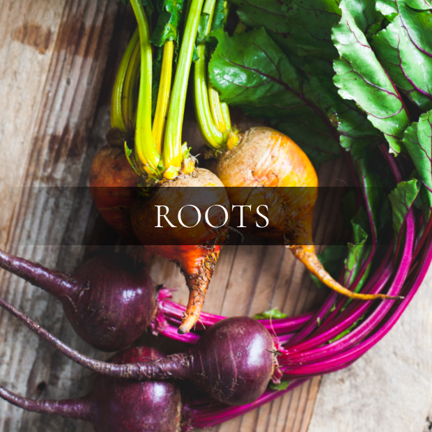 ingredients-roots