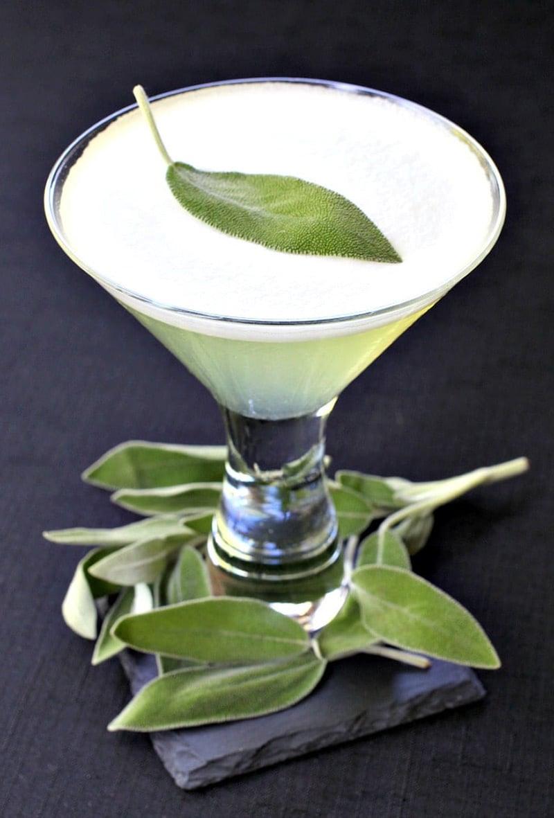 sage-gin-martini-topshot