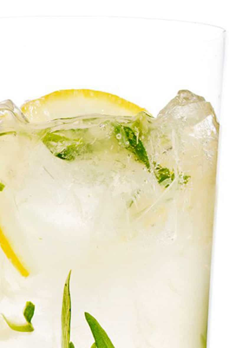 sparkling-tarragon-gin-lemonade